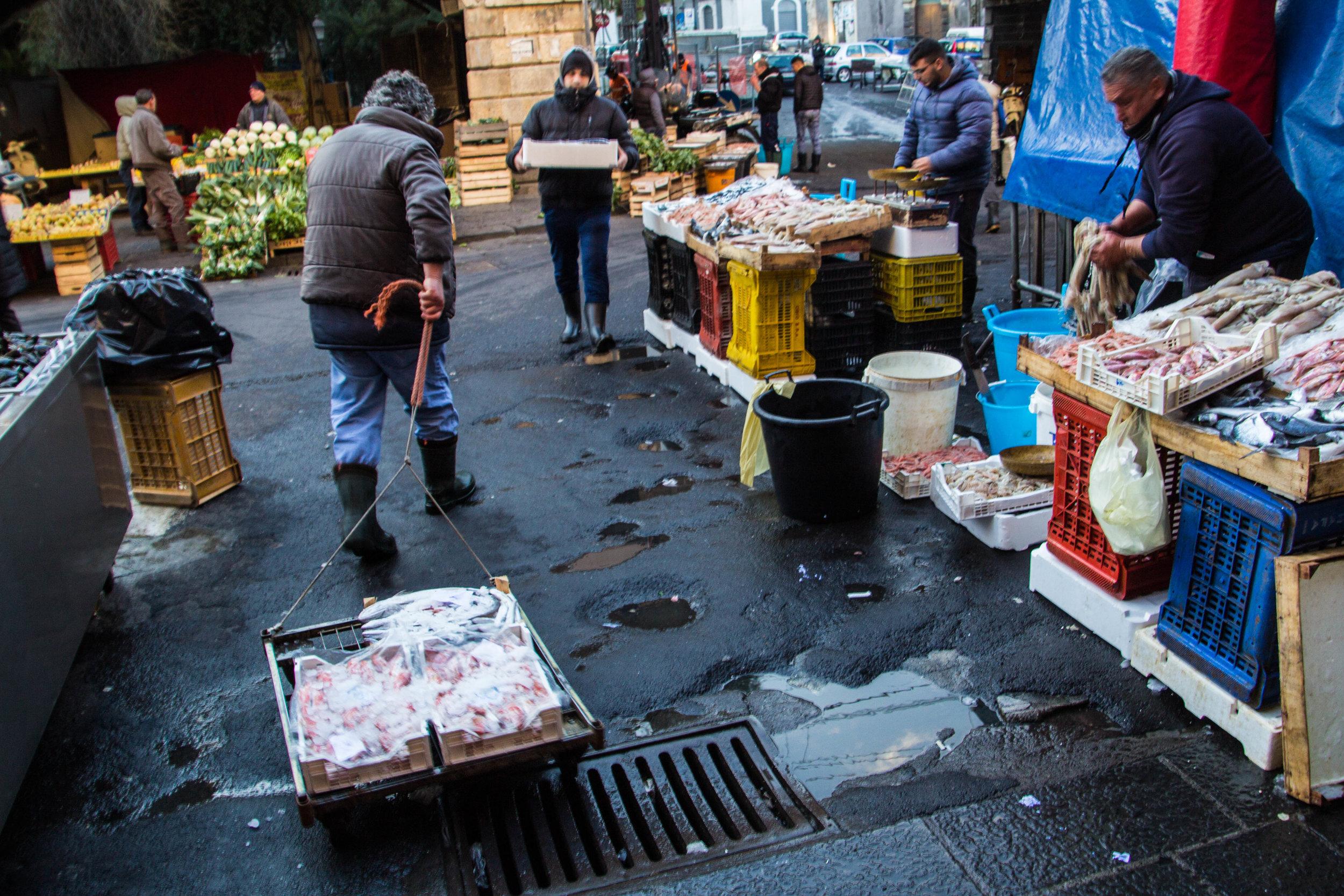 fish-market-catania-sicily-52.jpg