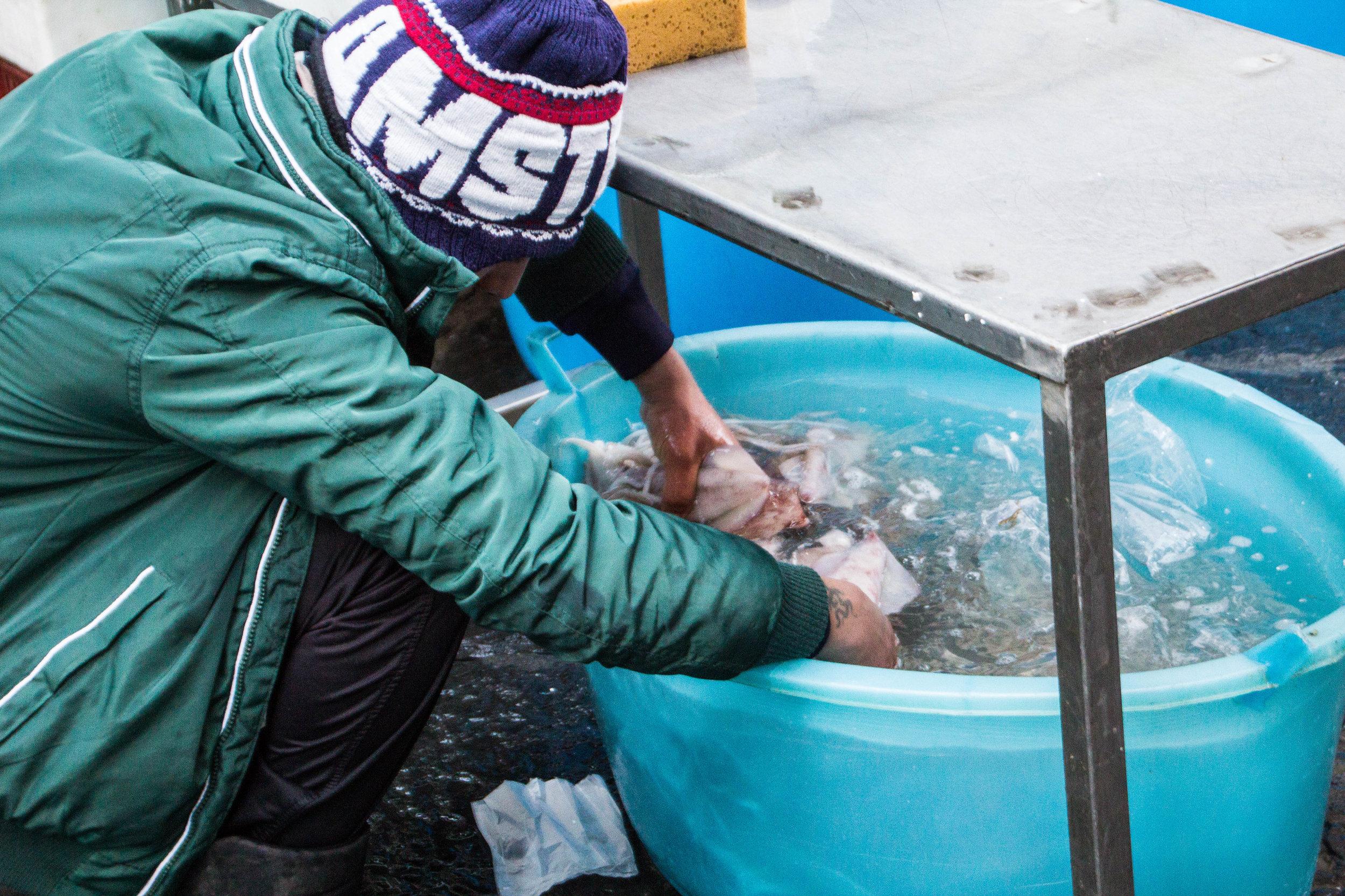 fish-market-catania-sicily-54.jpg