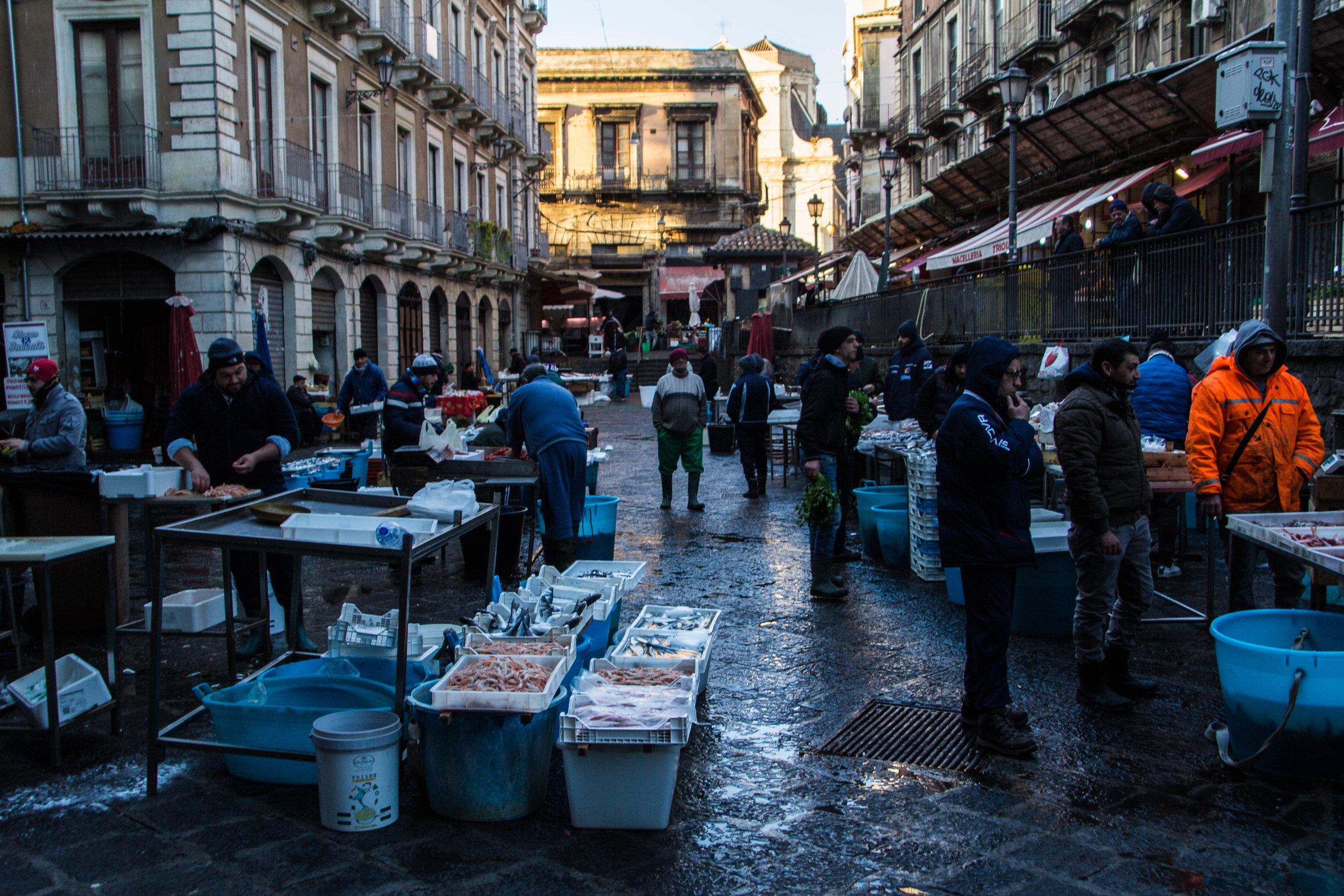 fish-market-catania-sicily-58.jpg
