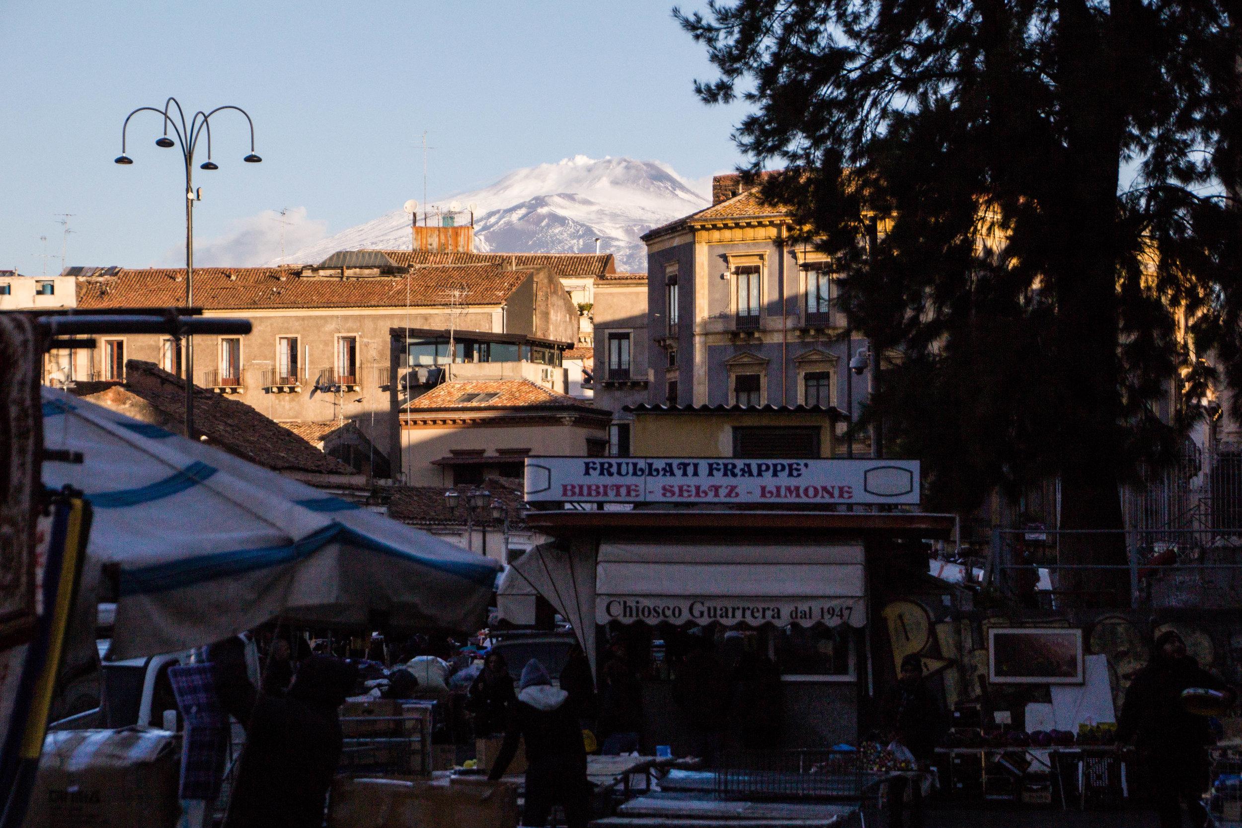 fish-market-catania-sicily-63.jpg