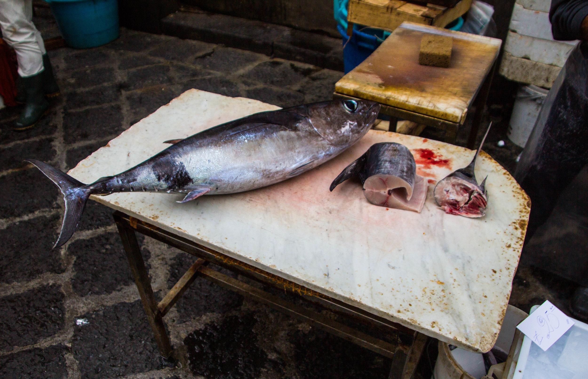 fish-market-catania-sicilia-3.jpg