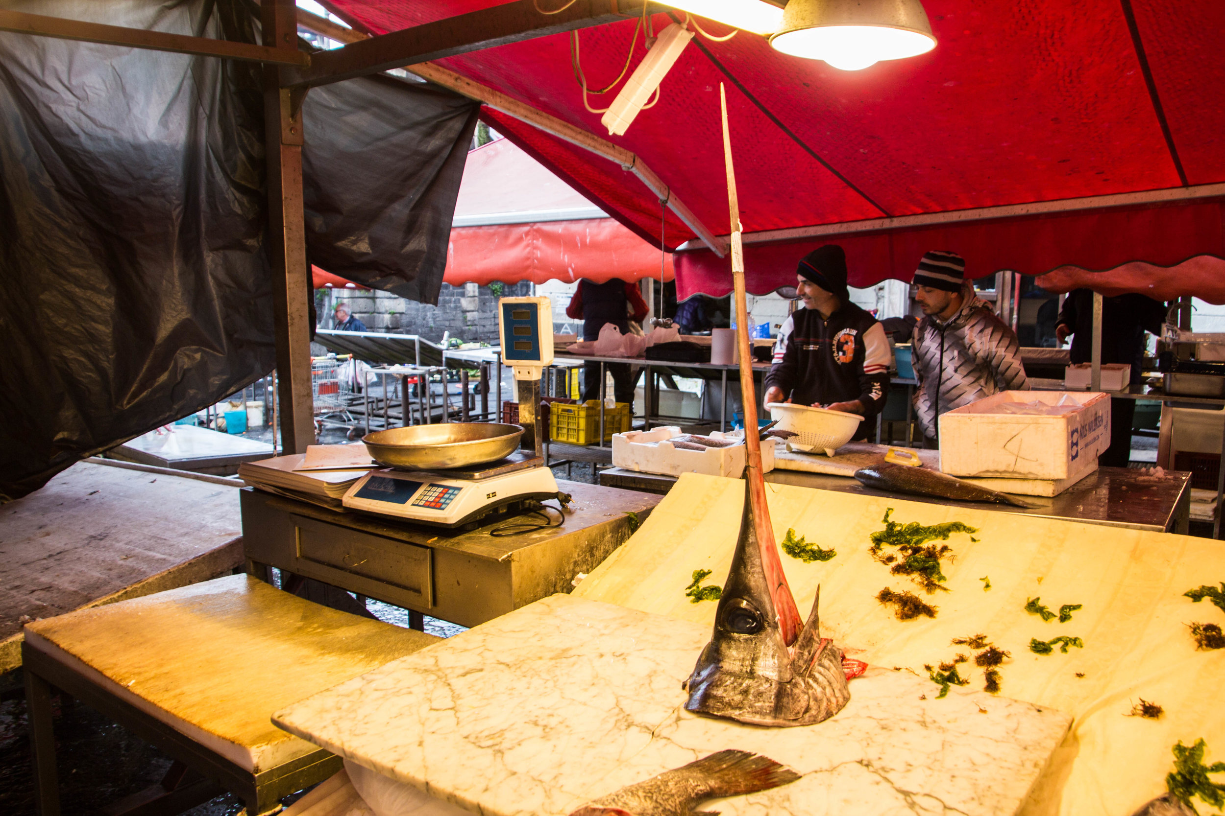 fish-market-catania-sicilia-11.jpg