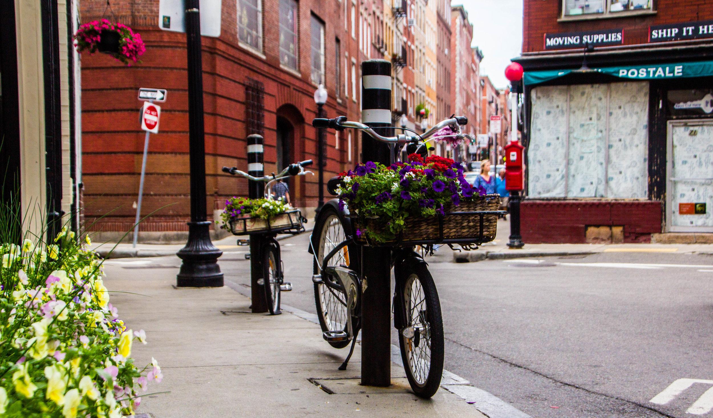 summer-north-end-boston-photography-5.jpg