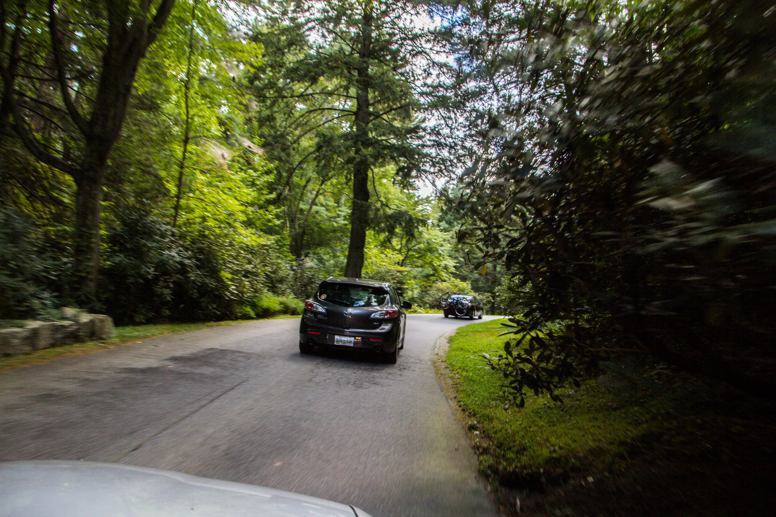 road-into-biltmore-asheville-6.jpg