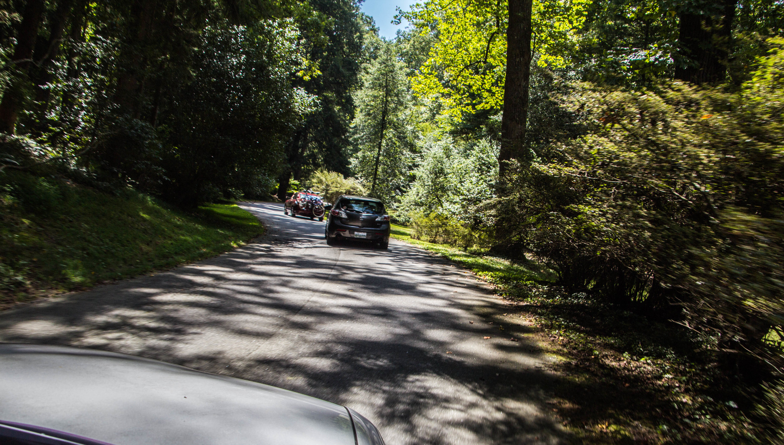 road-into-biltmore-asheville-7.jpg