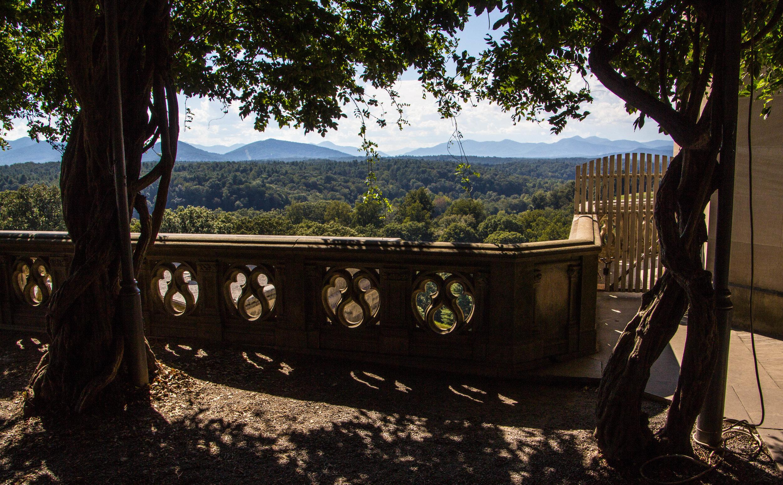 biltmore-mansion-grounds-asheville-71.jpg
