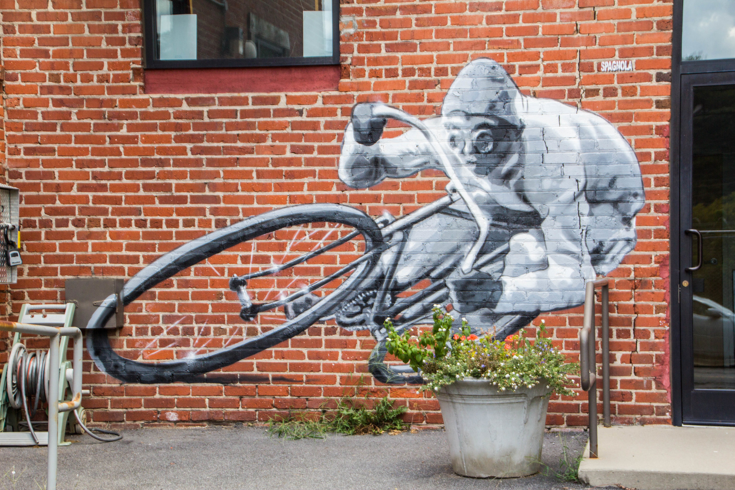 street-art-asheville-north-carolina-22.jpg