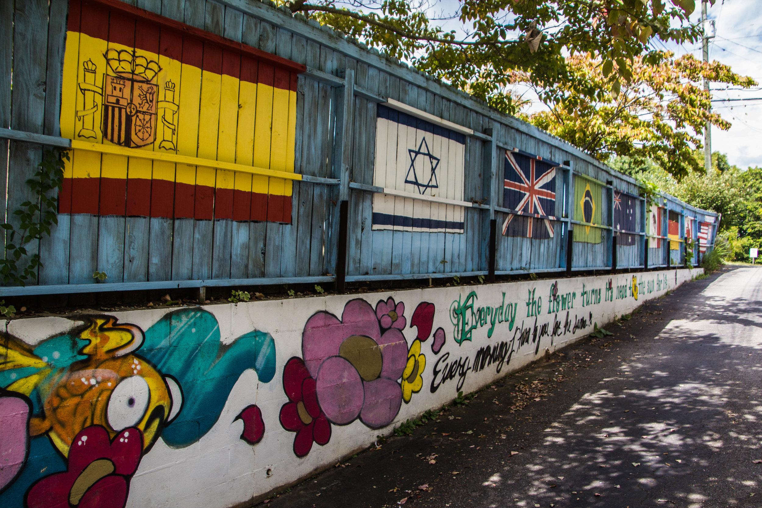 street-art-asheville-north-carolina-31.jpg