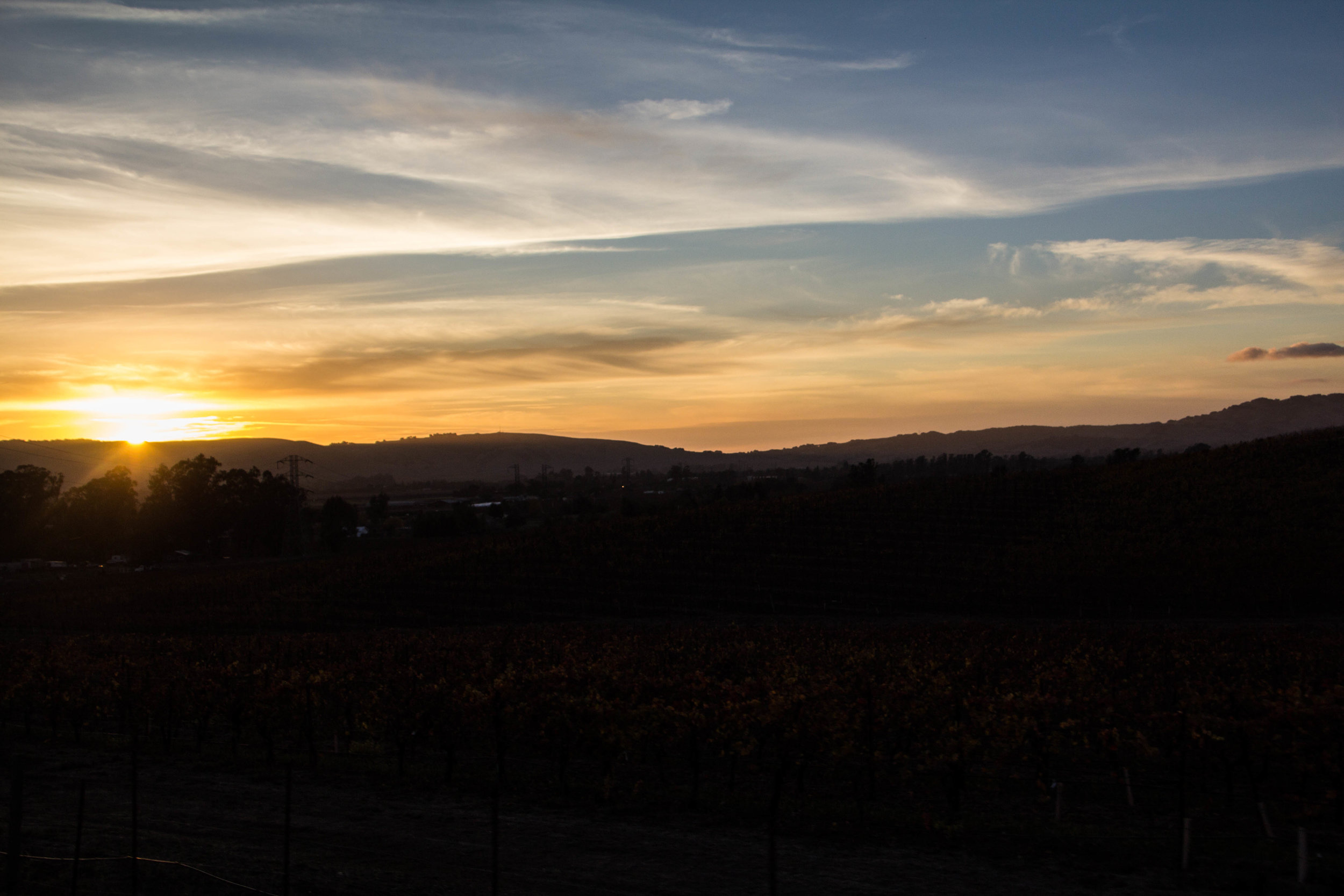 autumn-colors-napa-valley-53.jpg