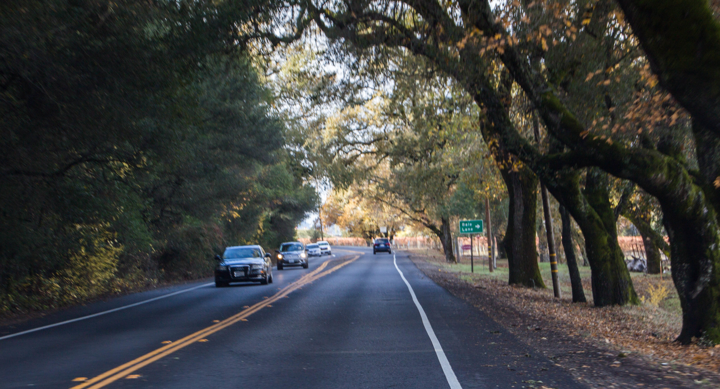 autumn-colors-napa-valley-26.jpg