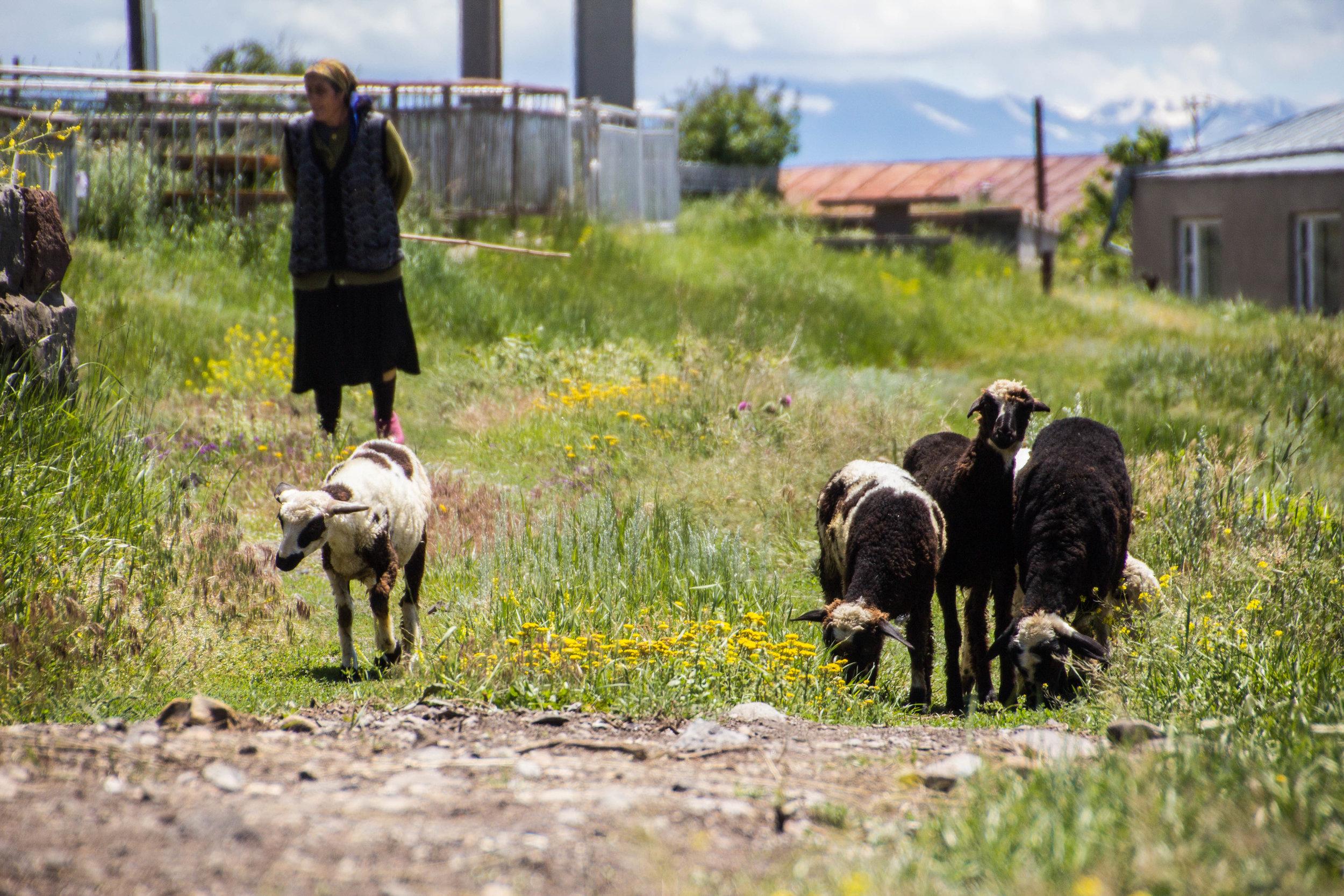 noratus-cemetery-armenia-15.jpg