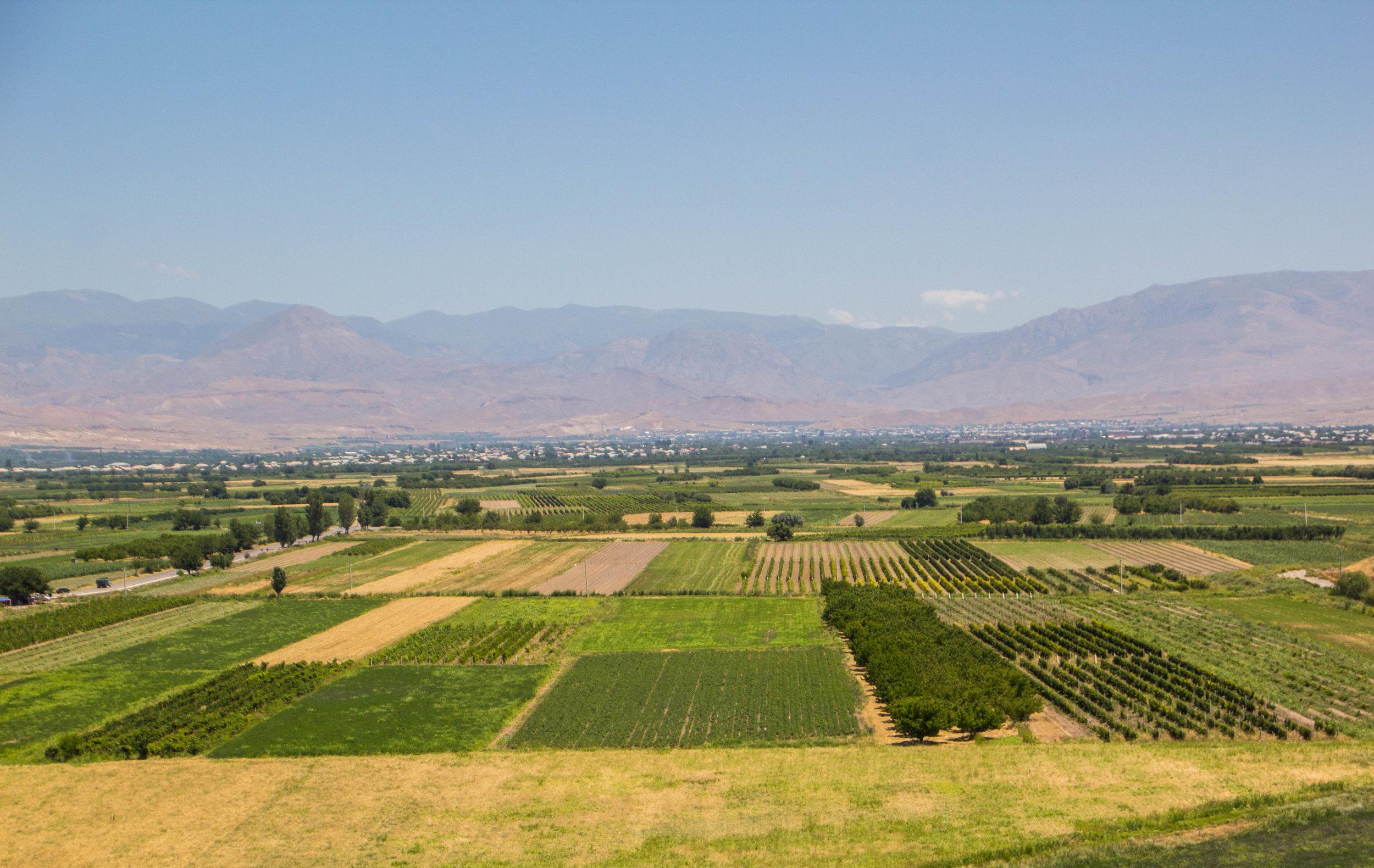 armenian-winelands-5.jpg