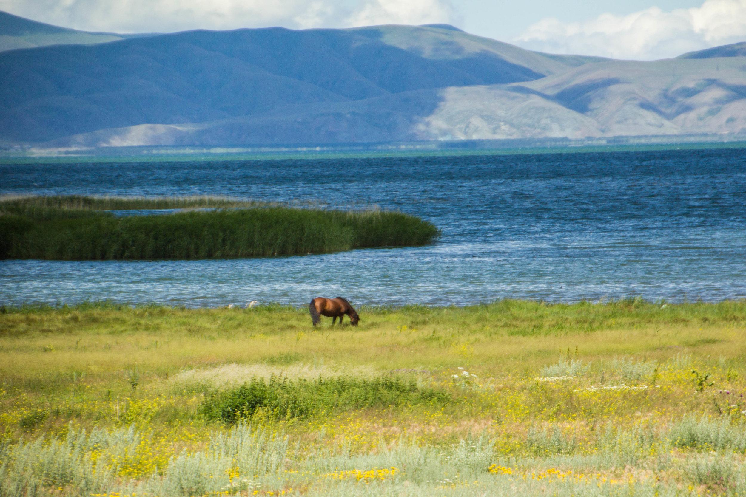 lake-sevan-roads-armenia-6.jpg