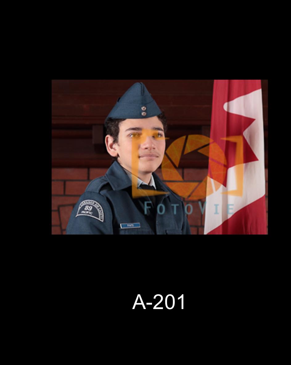 A-201.jpg