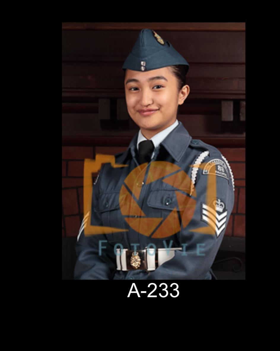 A-233.jpg
