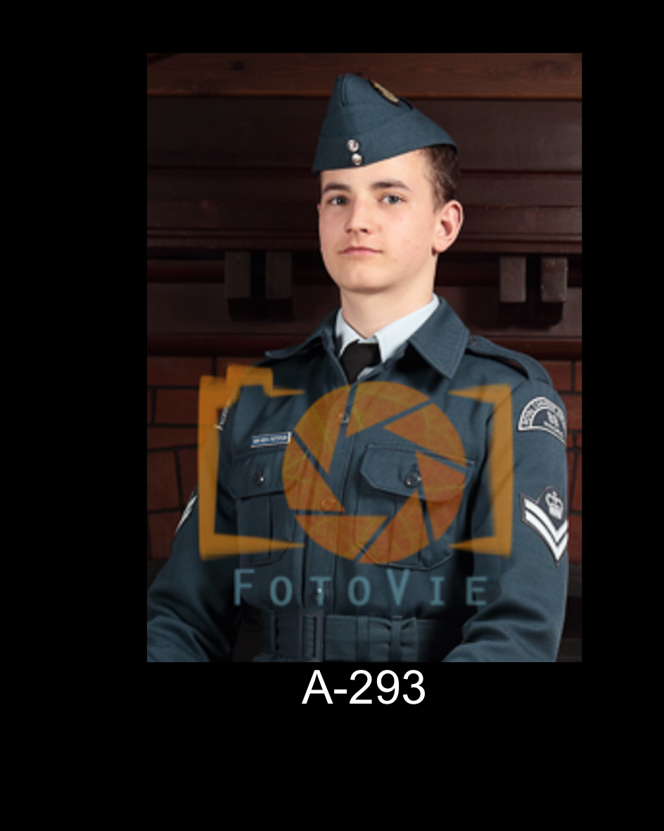 A-293.jpg