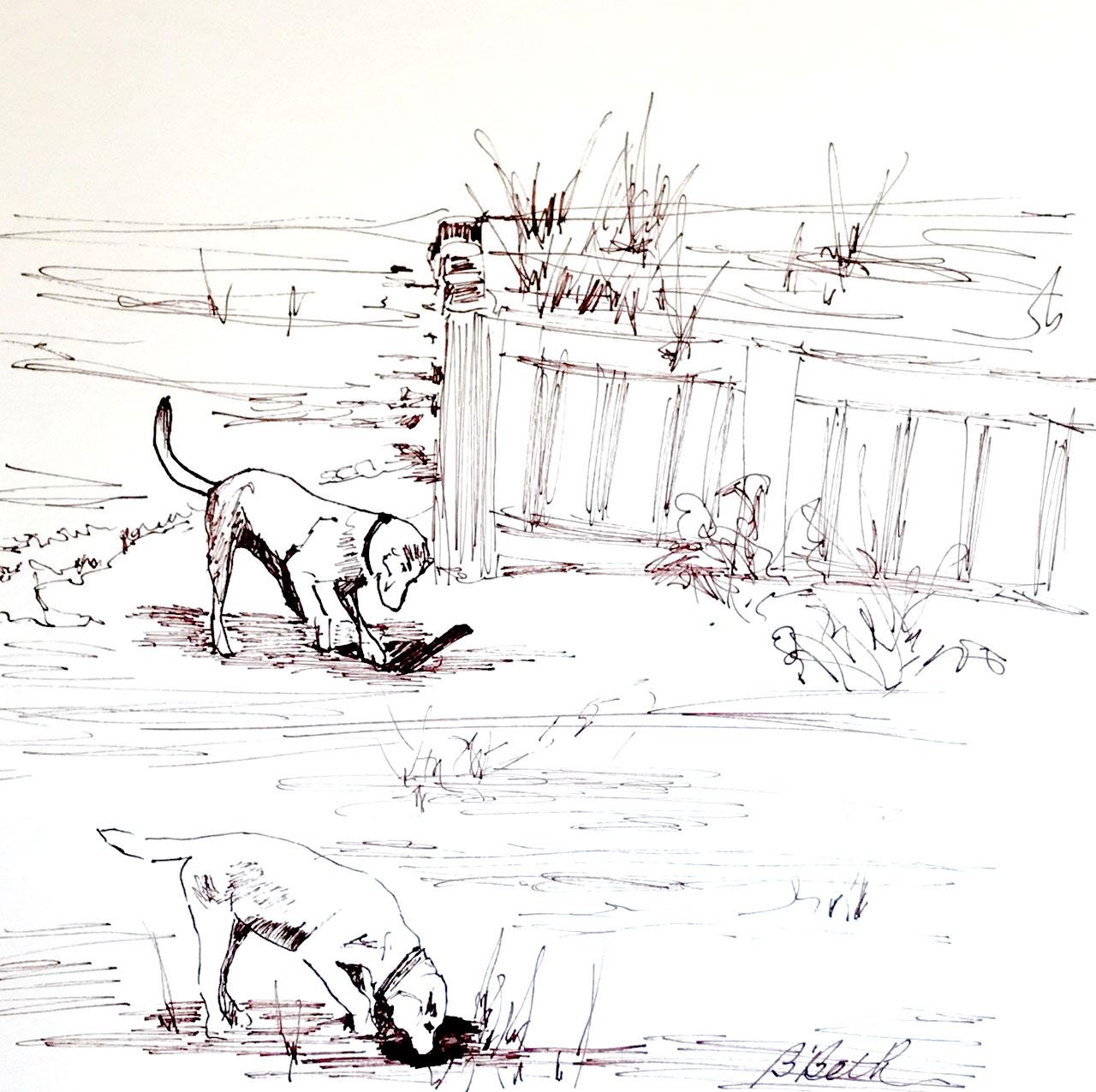 "TREASURE HUNTING, 12"" x 12"", Pen & Ink"