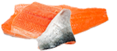 salmonFillets.png