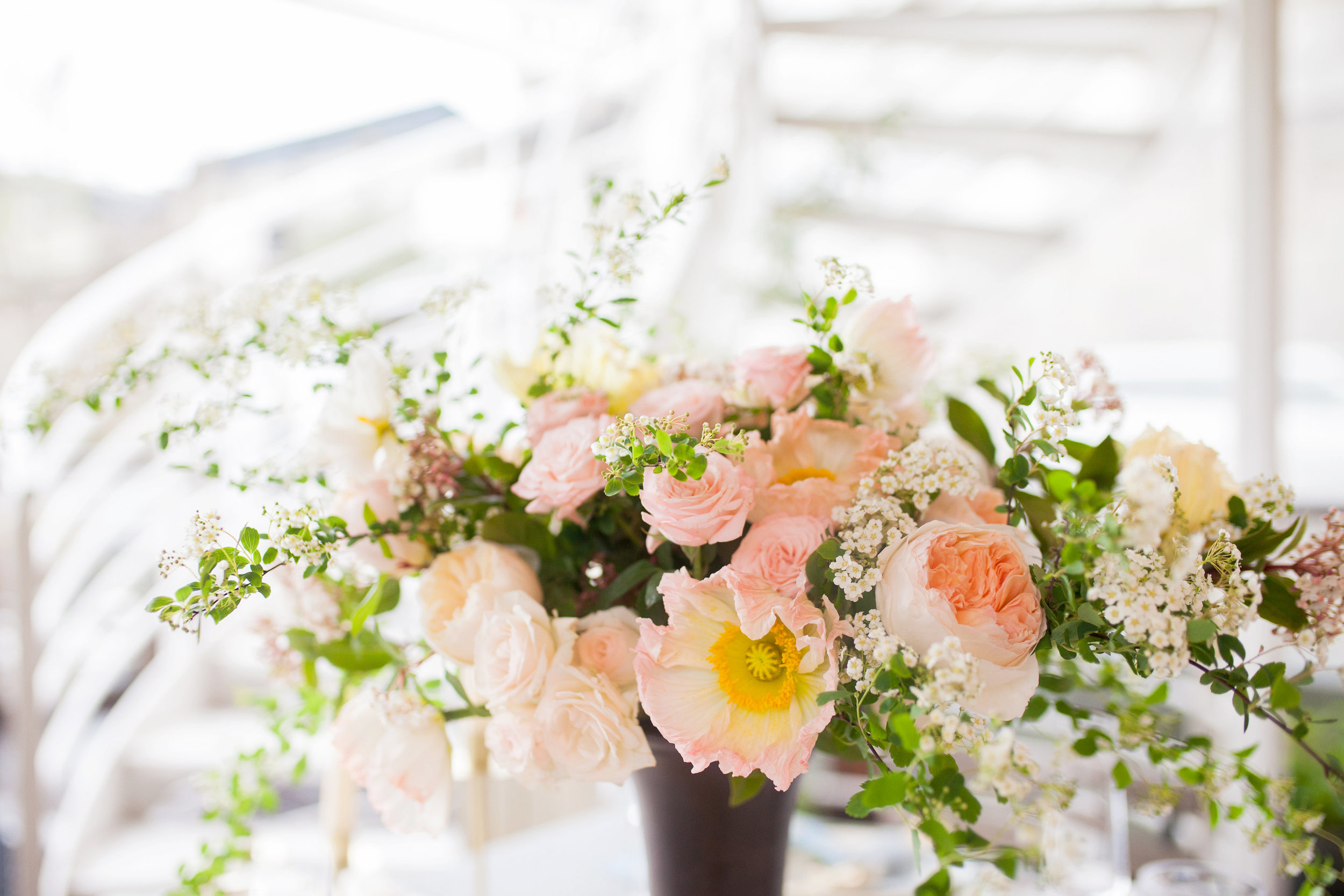 Drissia, artiste florale - 06 69 76 16 14artiste.florale@drissia.fr
