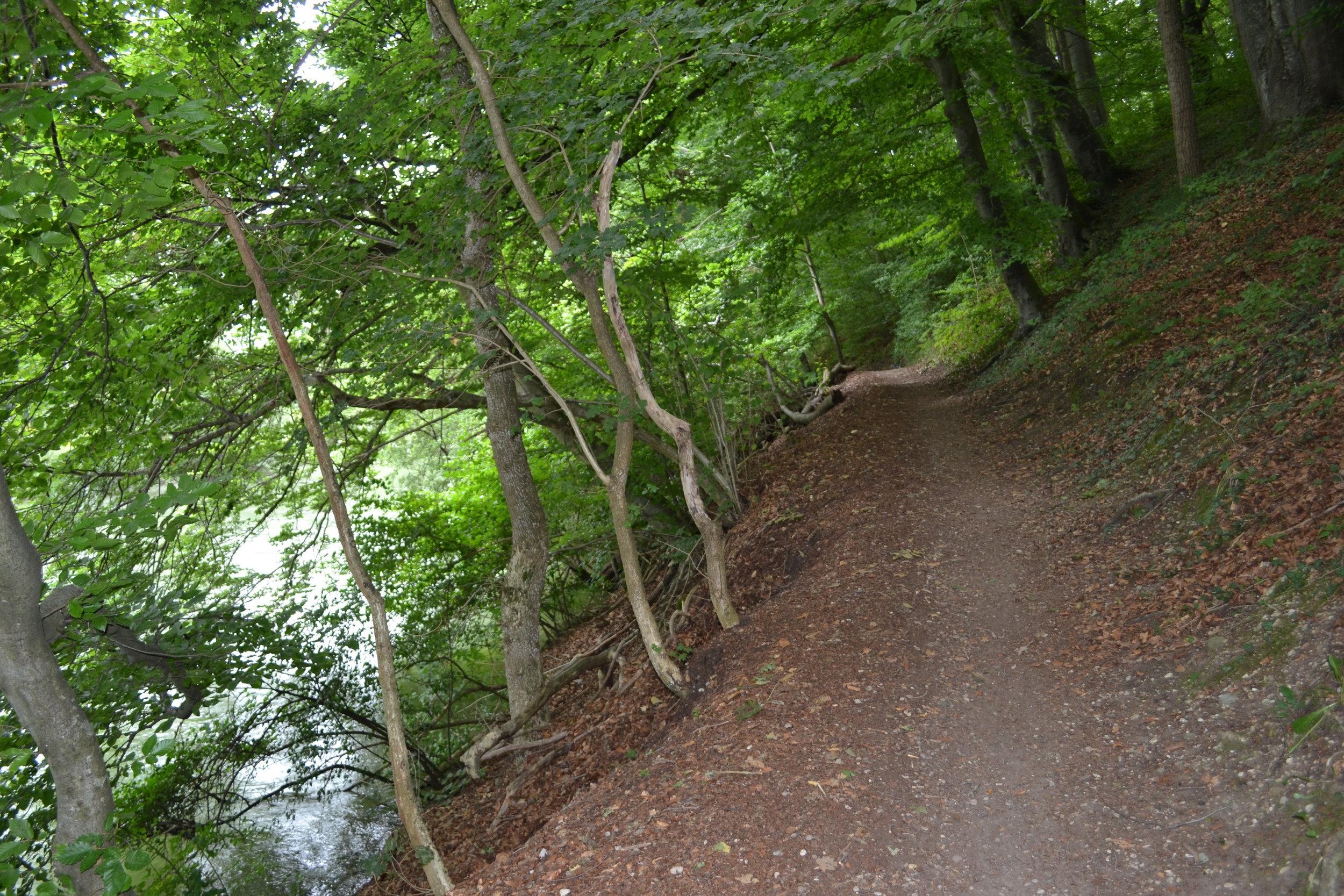 Sehr abwechslungsreich ist der Weg auch auf der anderen Uferseite.