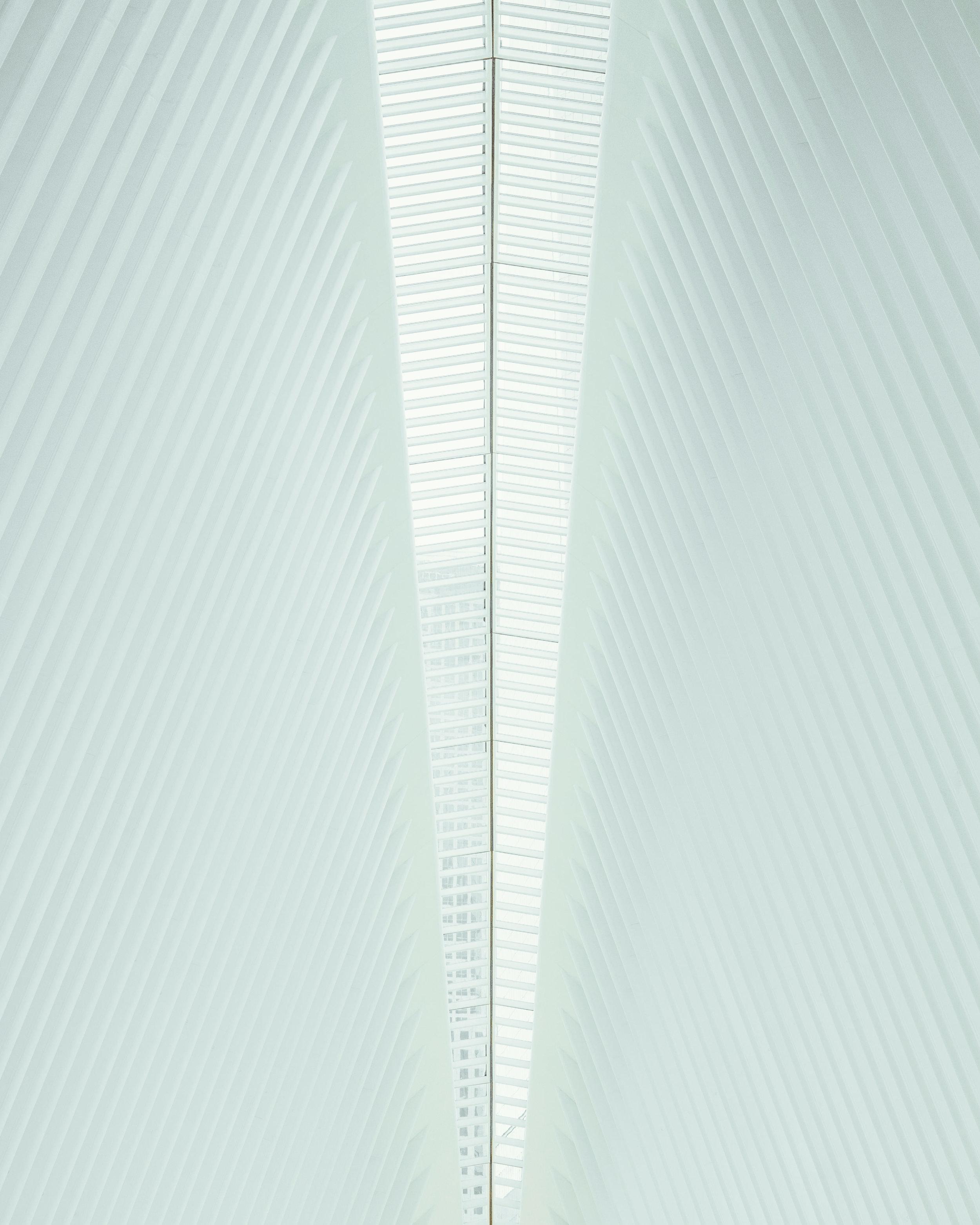 oculus (1 of 1)-2.jpg