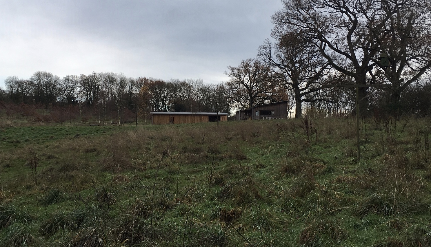 The new Barn Owl barn (to the left of the existing barn) situated near the Barn Owl field.