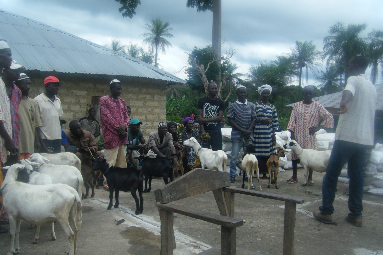 Distribution of Agric Inputs to farmers at Makuthaneh (10).jpg
