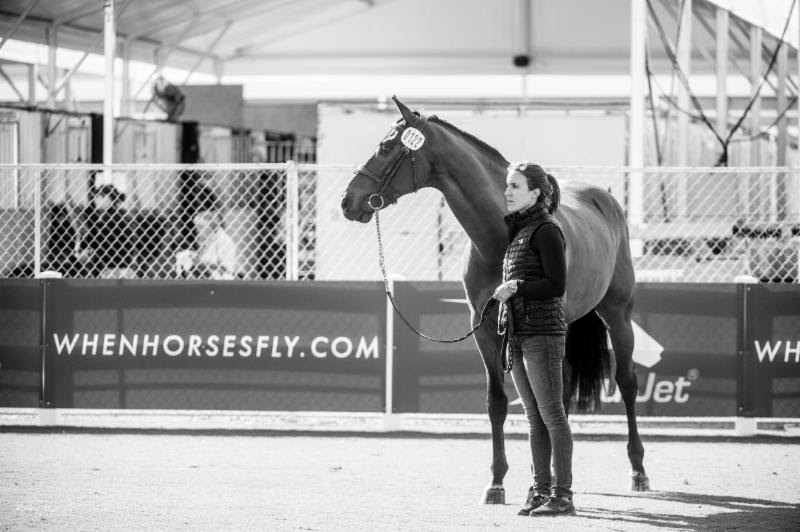 Full-time groom, Liz Wilhelm (pictured), will be heading Gallagher/Meller Sport Horses' new quarantine program at their Mei Lun facility this summer and fall in Wellington, Florida. Photo:    Kathy Russell Photography