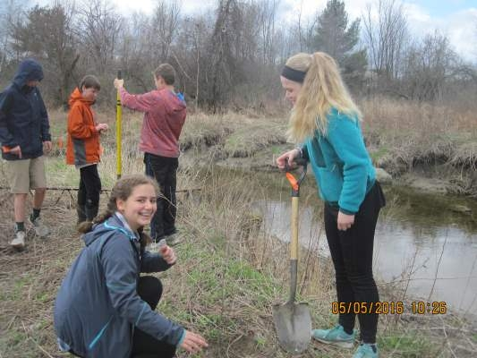Photos from Leah_Williston planting May 2016_2