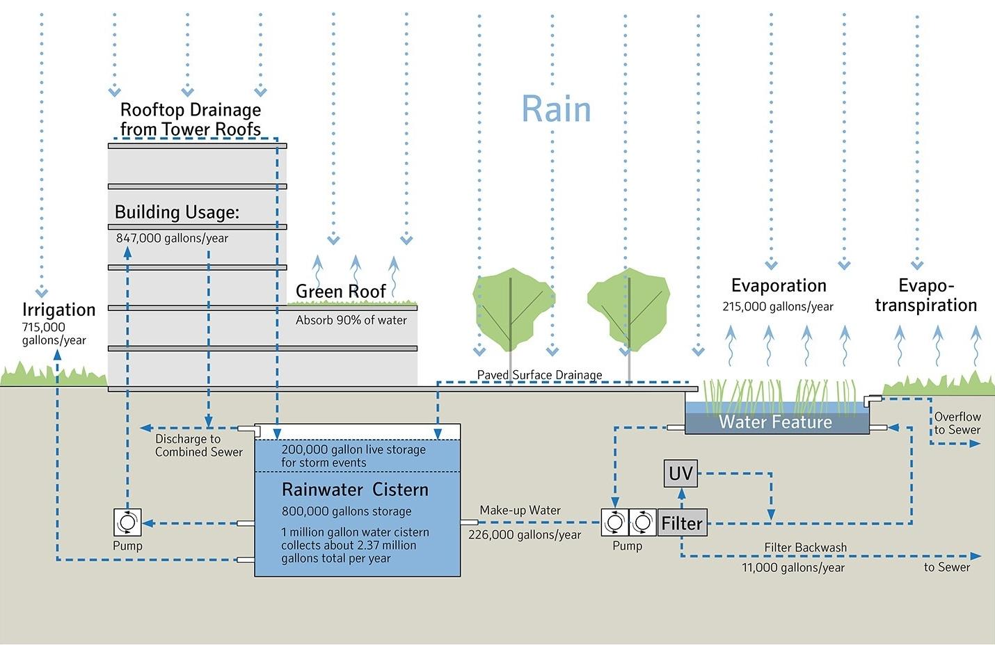 Figure 6. Rainwater system. Courtesy of NBBJ.