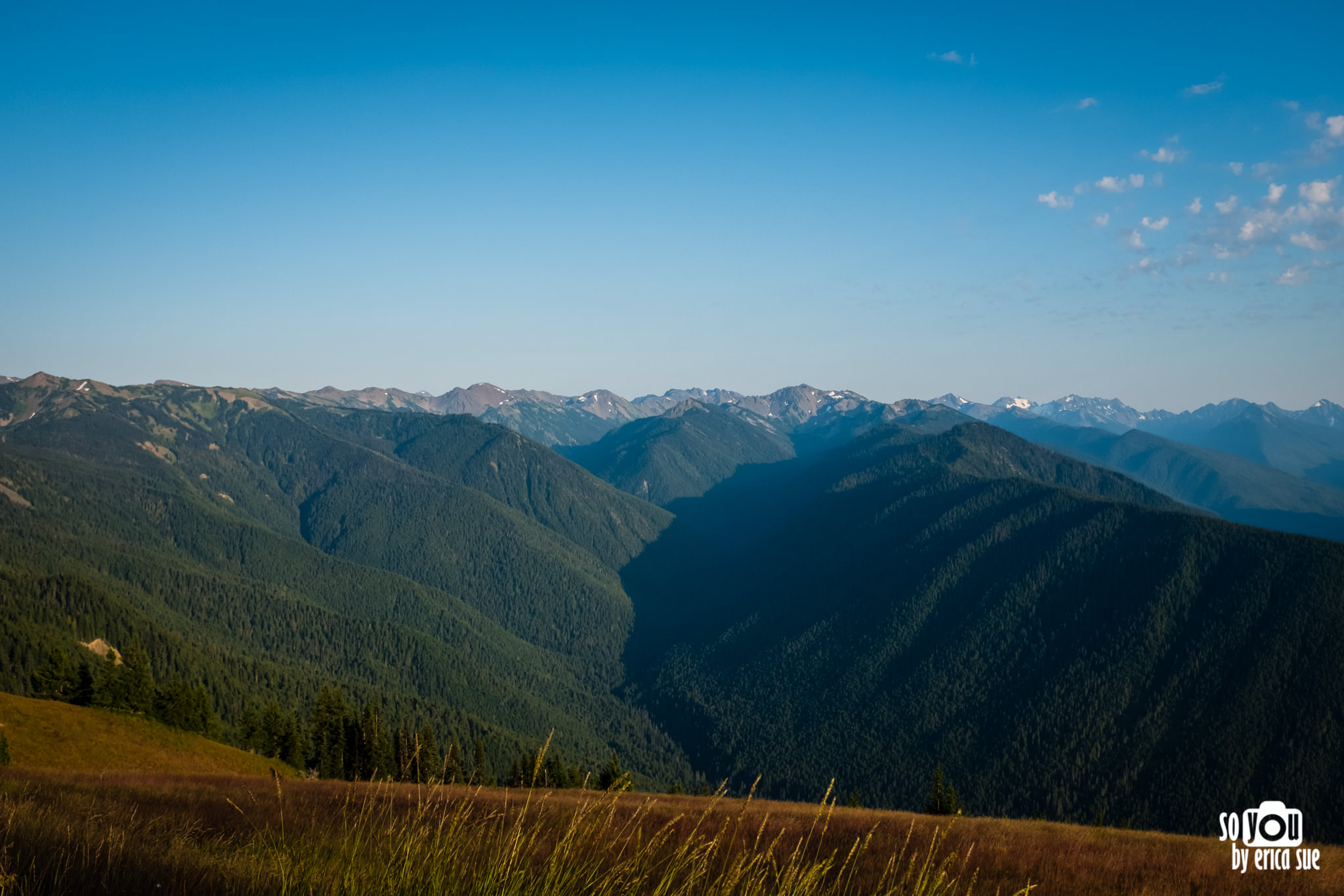 so-you-by-erica-sue-travels-olympic-national-park-road-trip-itinerary-3106.JPG