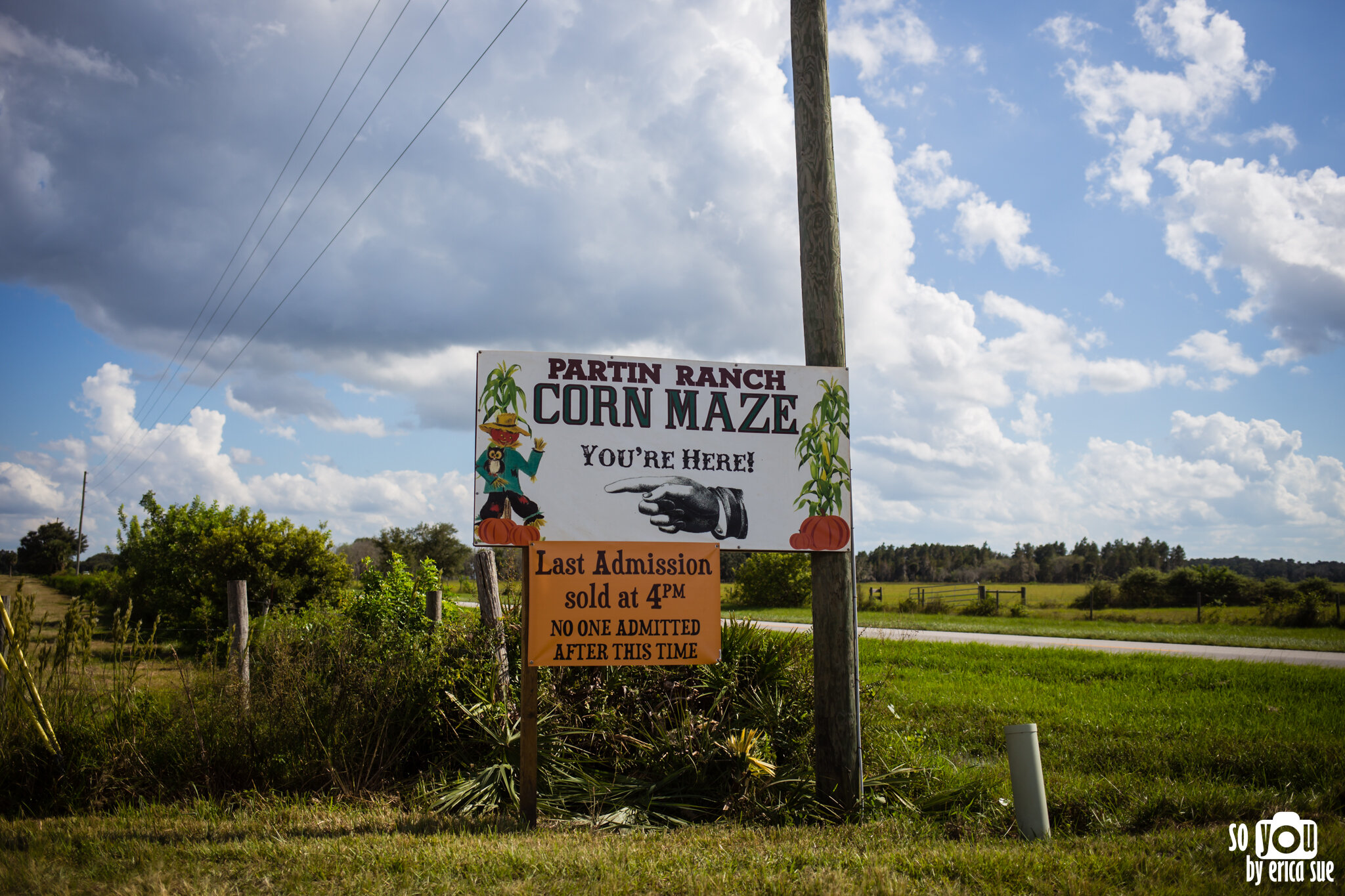 so-you-by-erica-sue-disney-photography-family-mickey-not-so-scary-partin-ranch-corn-maze-old-town-orlando-4396.jpg