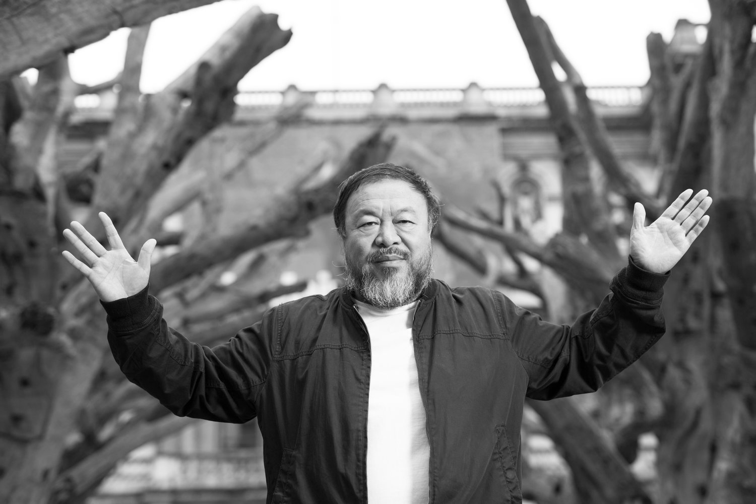 Ai Weiwei presenting his installation  Tree  in the courtyard at the Royal Academy of Arts, 2015. Photo by David Parry.