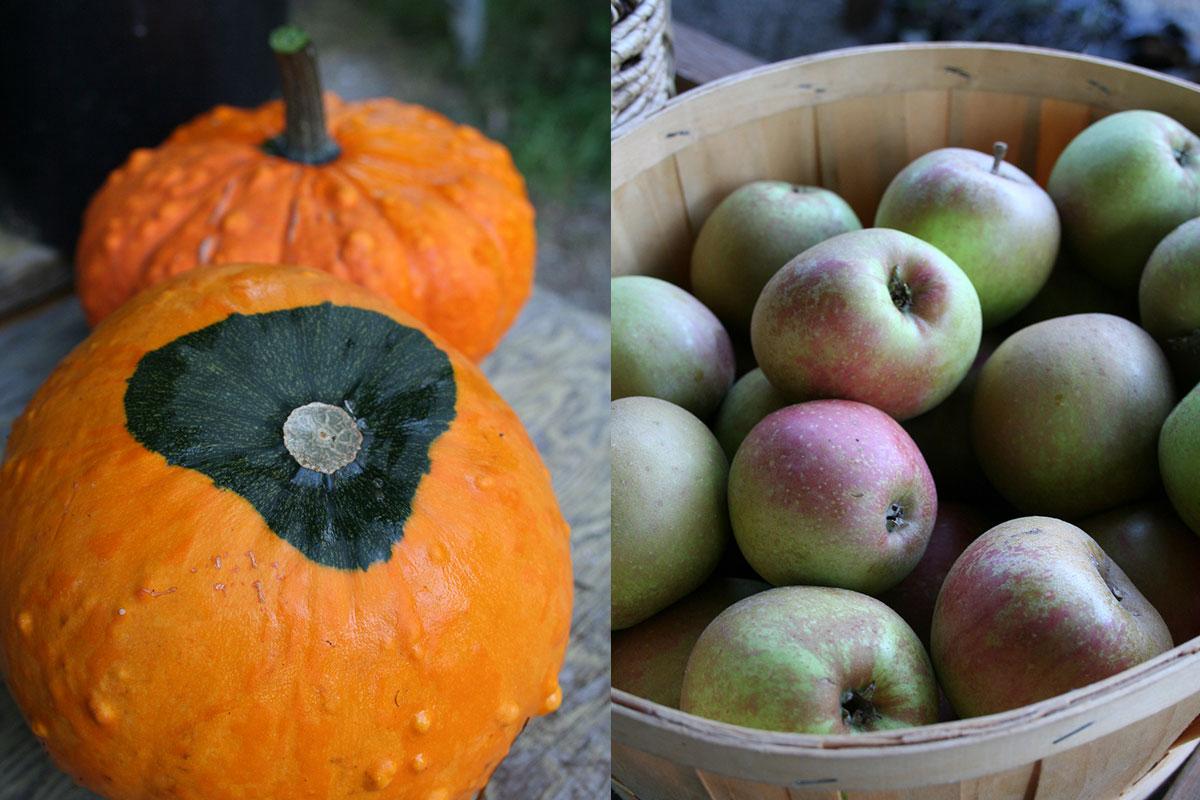 whatsfreshseptember-apples-pumpkins.jpg