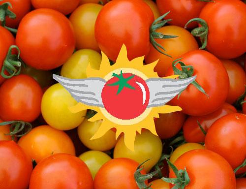 sunwing-tomatoes.jpg