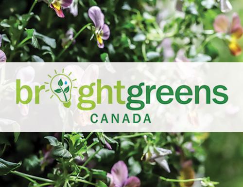 bright-greens-canada.jpg