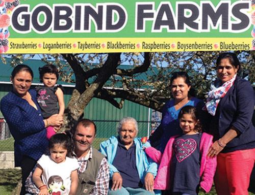 gobind-farm.jpg