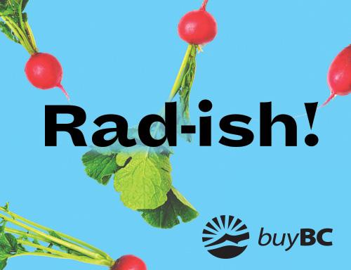 radish-food-zine.jpg