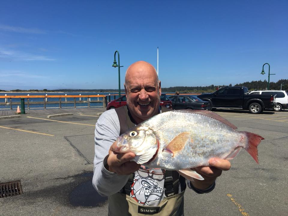 May Surf Perch Derby - May 1 - 31, 2019