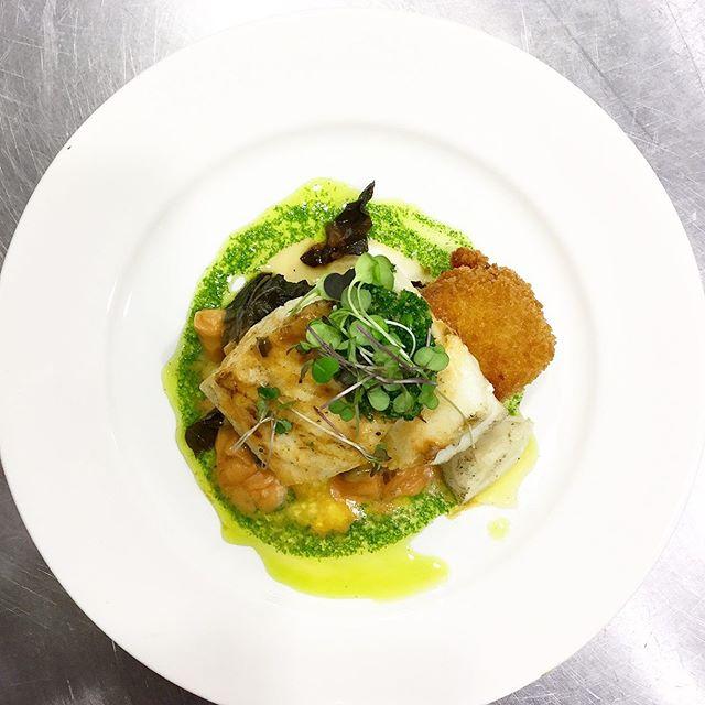 NC Mahi Mahi - bacon balsamic collared green, tomato tartare, potato croquette, parsley orange gremolata, rocket pesto, garlic aioli.