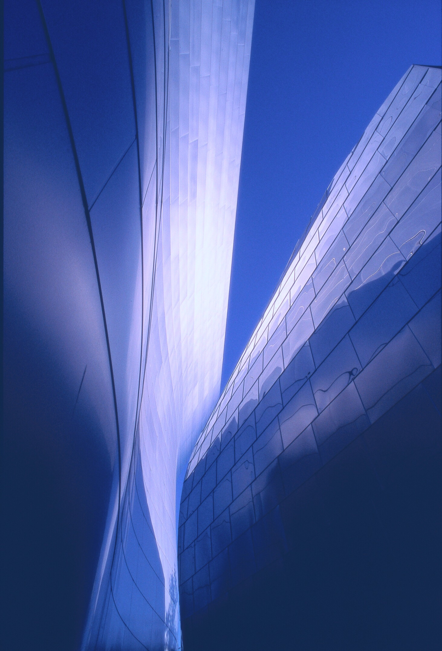 Frank Gehry's Disney Hall