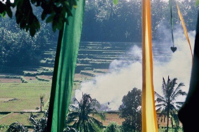 Dreaming in Bali