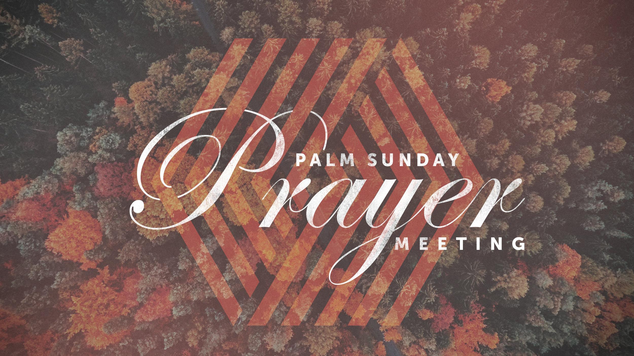 Palm-Sunday.jpg