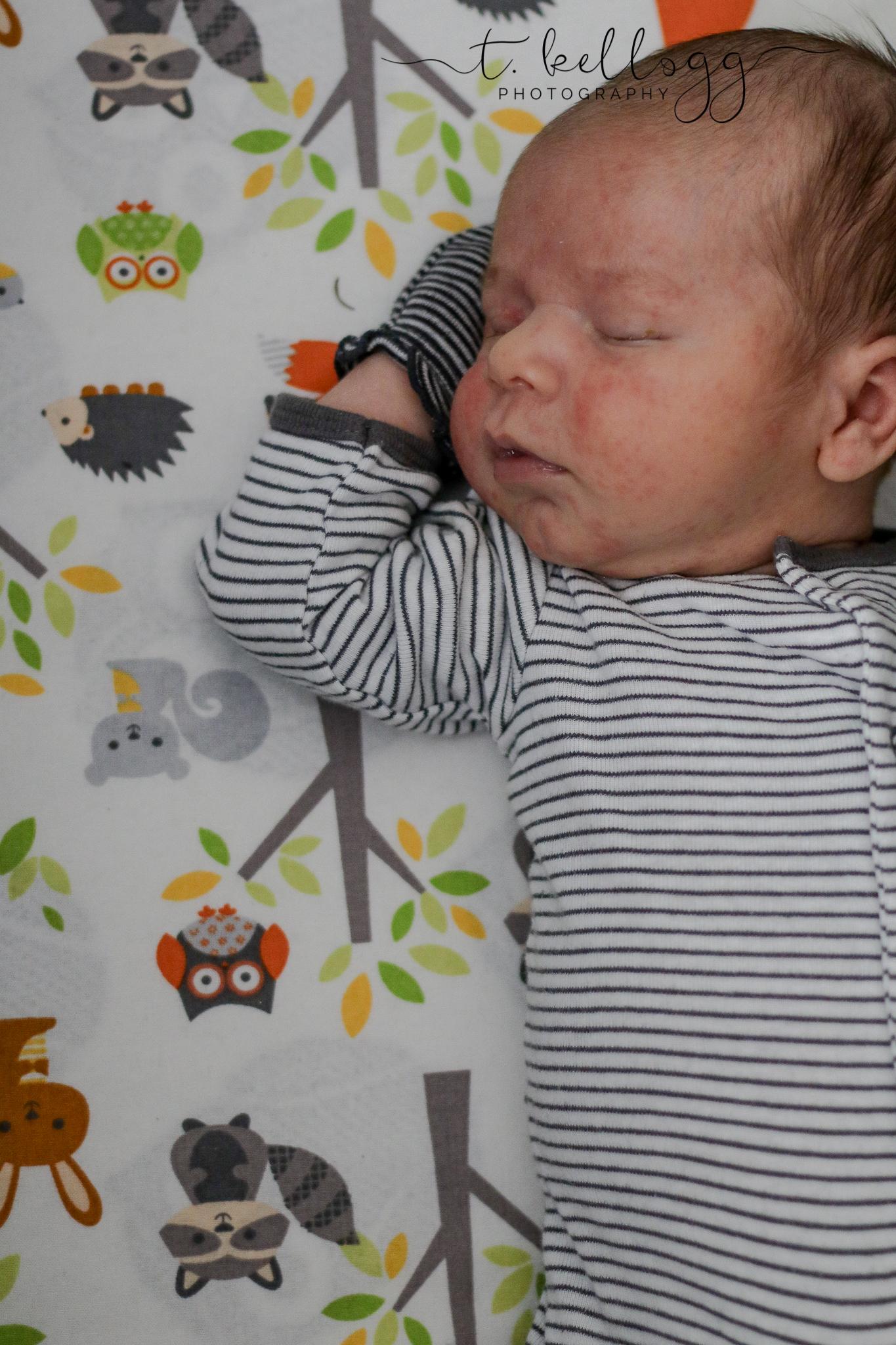 newborn-denver-photographer