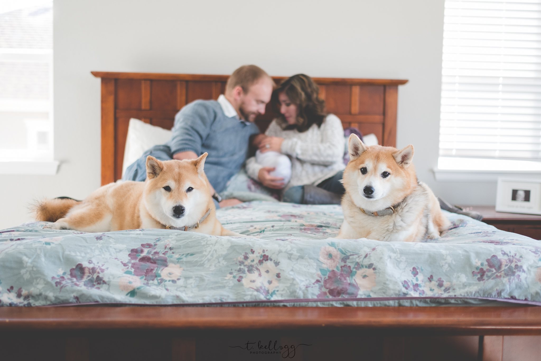 denver-newborn-photographer