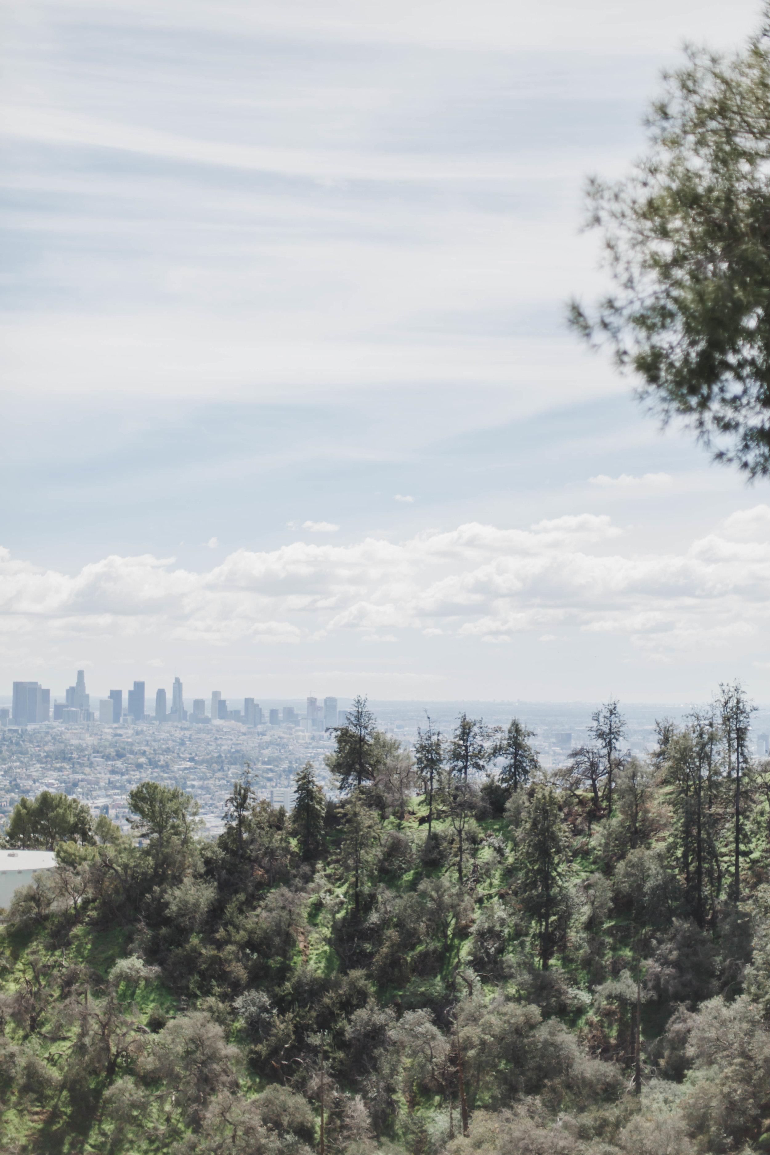 LA (89 of 134).jpg