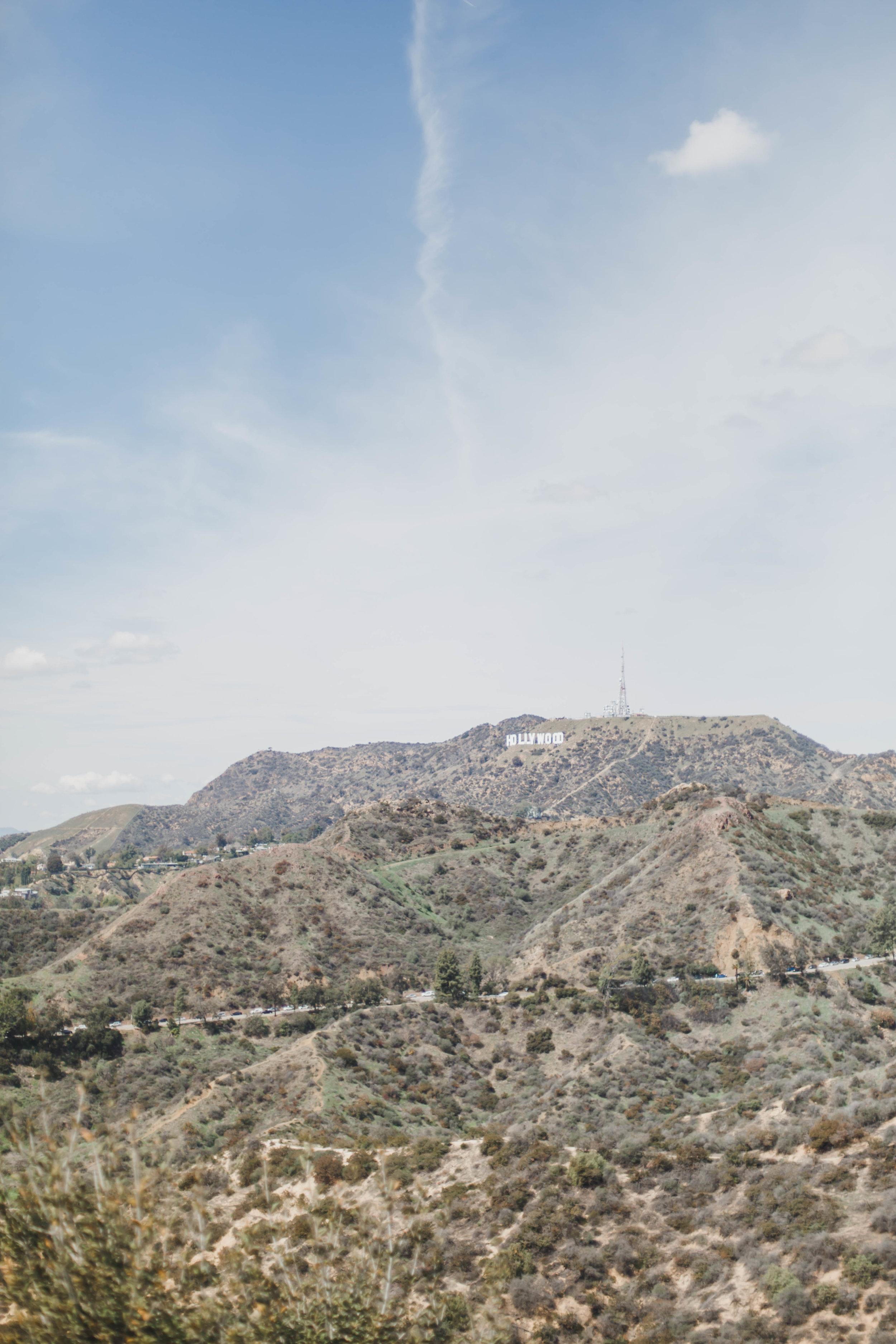 LA (96 of 134).jpg