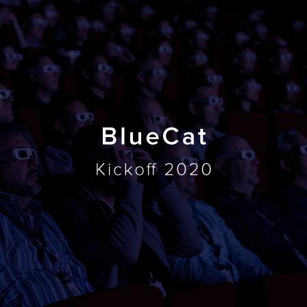 BlueCat_Kickoff_2020_COVER_OPTION_3.jpg