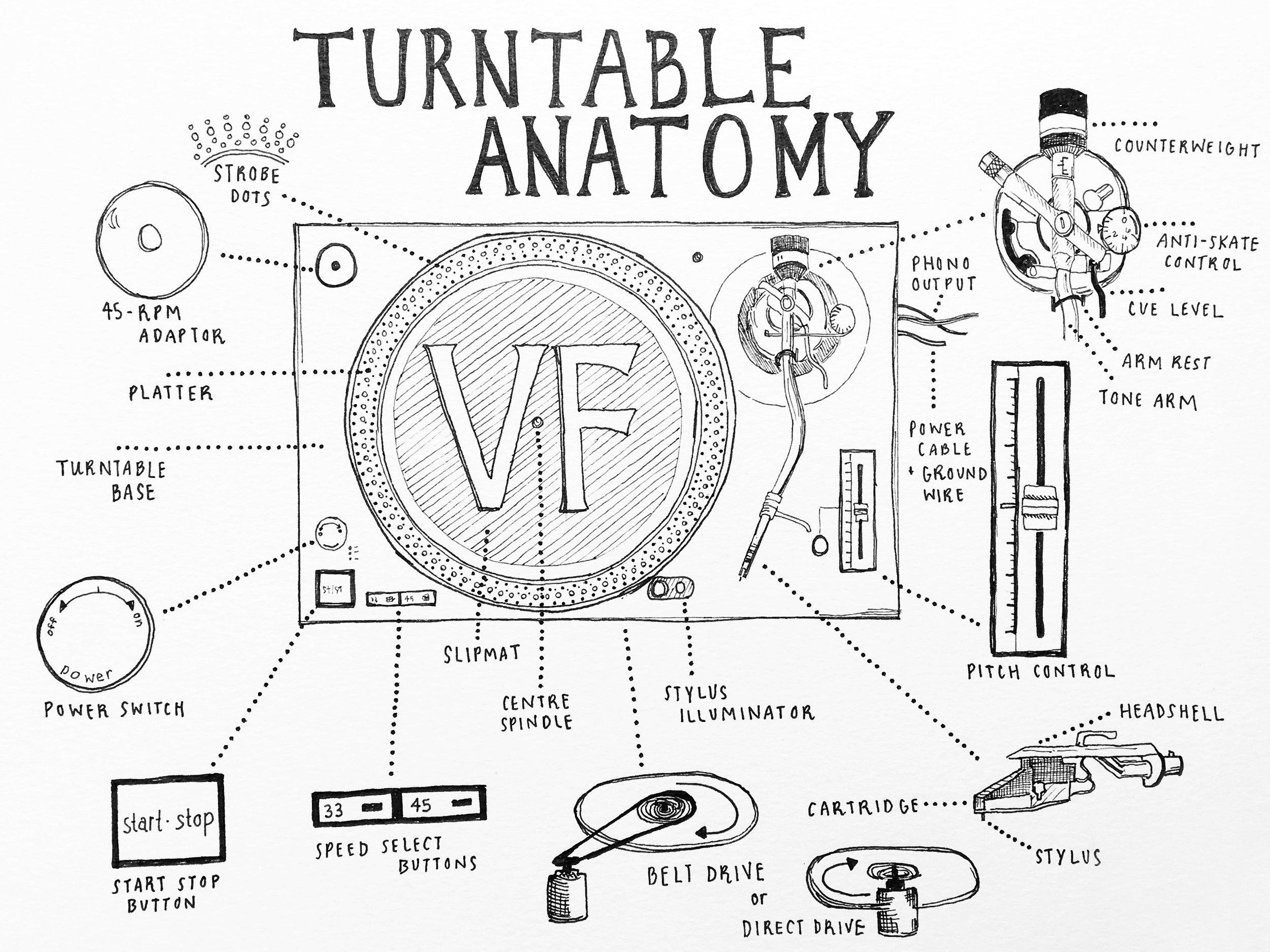 Turntable Anatomy