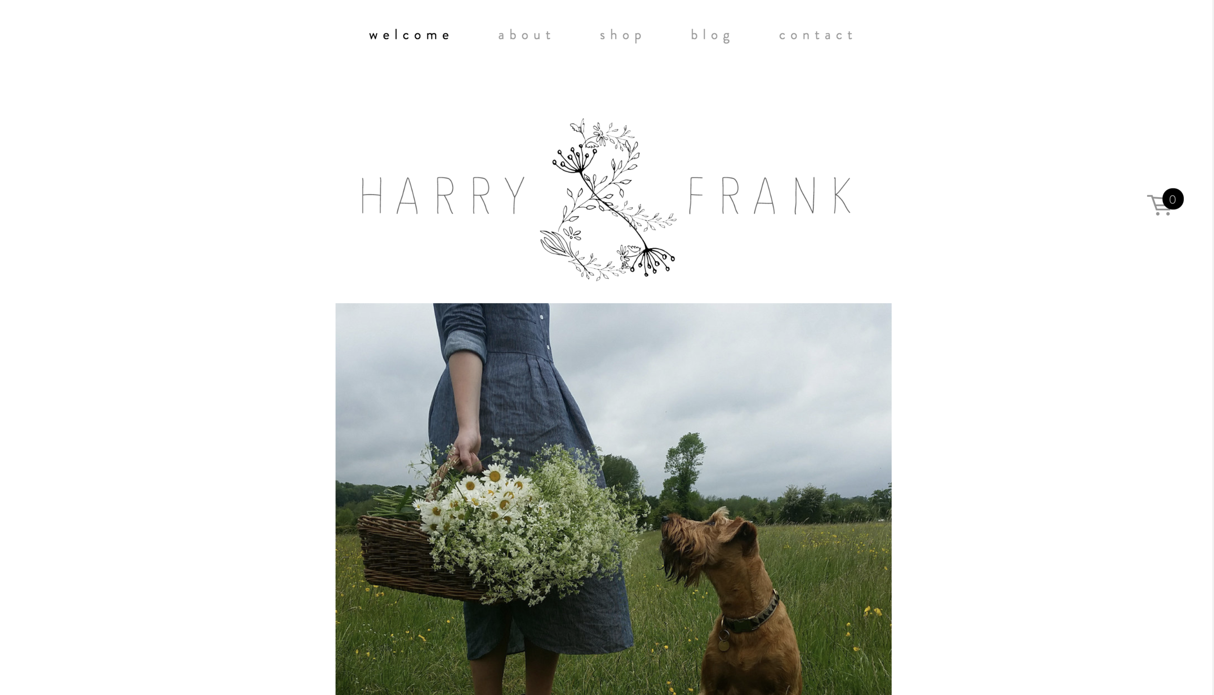 harry and frank website